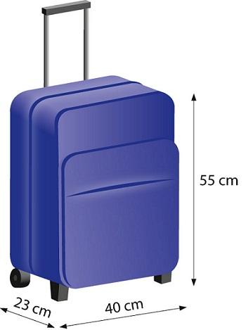 1d3fc1c56c0a1 Bagaż podręczny do samolotu wymiary - blog Bucik Sklep